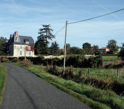 Château de Fromenteau / Labyrinthe des vignes
