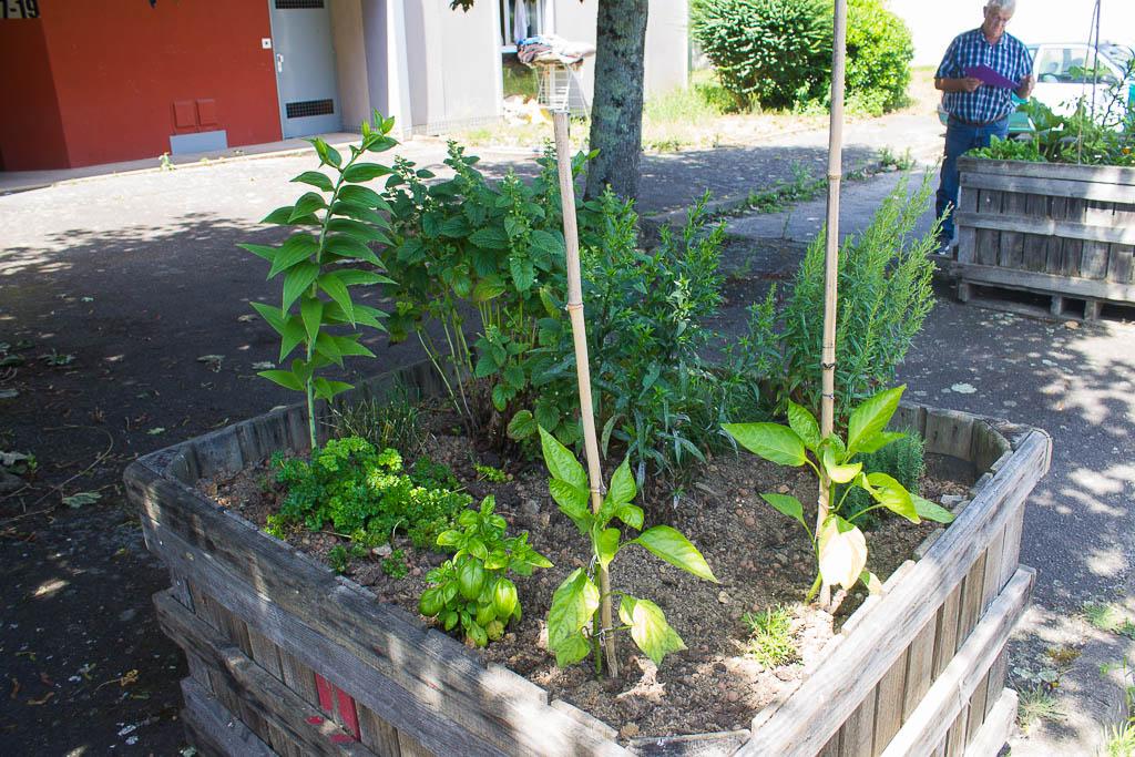 19 a jardinspartages