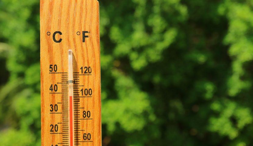 Sècheresse, fortes chaleurs… ce qu'il faut savoir